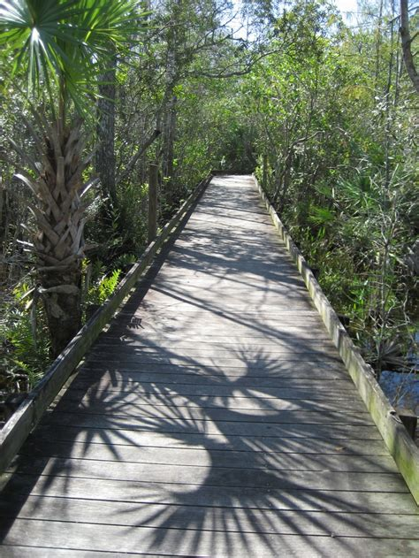 the and archaeology of florida s wetlands telford press books pin by susan telford on the path less traveled