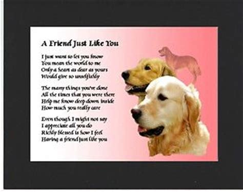 golden retrievals poem pin by coastergreetings co uk on friend poem gifts