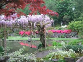 seattle japanese garden celebrates opening day first viewing parkways
