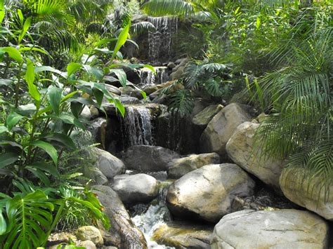 waterfall in backyard garcia rock and water design blog