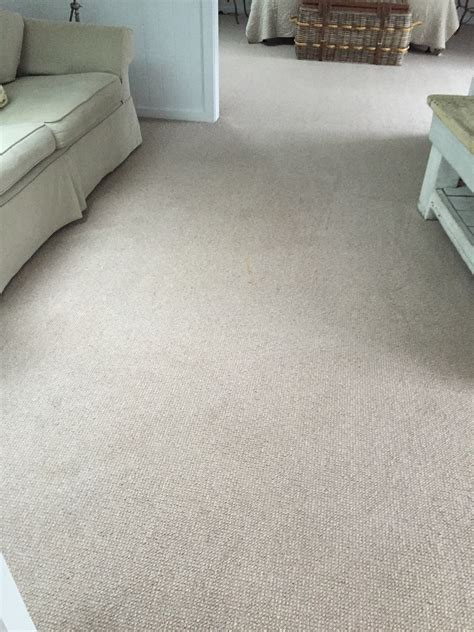 steam clean wool rug palm carpet cleaning waratah carpet cleaning sydney