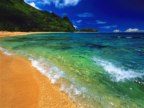 hawaii beach ? Down Syndrome Prenatal Testing