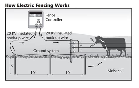 electric fence wiring diagram wiring diagram electric fence charger k