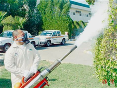 how much does it cost to fumigate a house fumigation quote fumigation