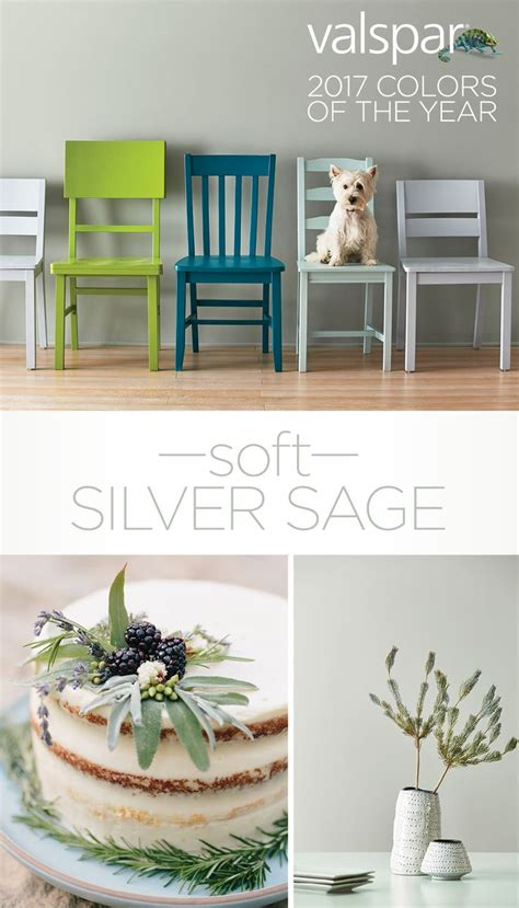 colors of the year best 25 silver sage ideas on pinterest silver sage