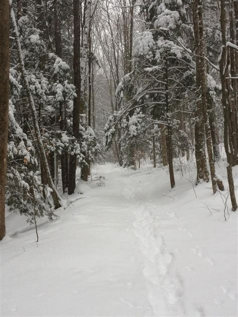 christmas in the berkshires 127 best winter in the berkshires images on winter the
