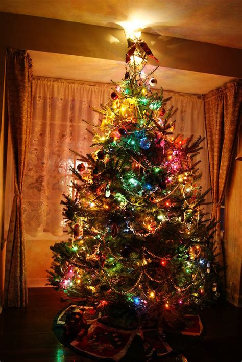 colorful lighted christmas tree pictures photos and