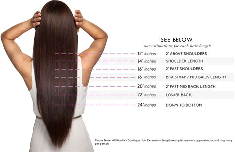 What Is The Best Lenght Of Hair For A Saggin Jawline | image gallery hair length chart