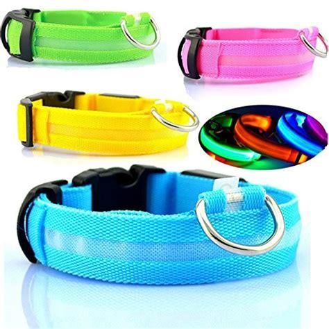led collar light best collars with lights webnuggetz com