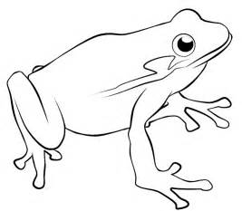 drawing frog clipart