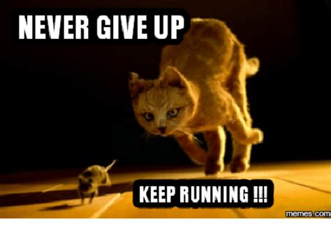 Never Give Up Meme - never give up keep running memes give up meme on me me