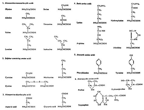 carbohydrates generally a molecular formula the nutrition and feeding of farmed fish and shrimp a