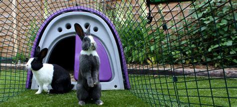 Rabbit Hutch Covers For The Winter Eglu Classic Konijnenhok Konijnenhok Voor Twee Konijnen