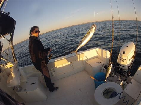 fishing boat gets run over by another boat october is the time for monster bass tuna other creatures