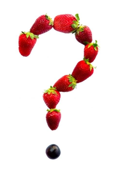 fruit questions frequently asked questions hospitality retail services