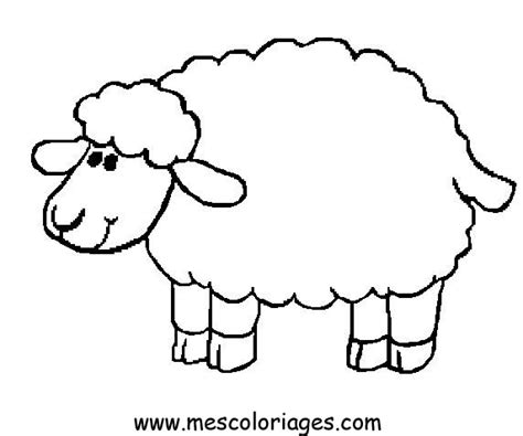 Sheep Coloring Pages Colouring Pages Sheep