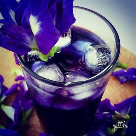 berisi 5 biji benih bunga pea jual biji benih bunga buterfly pea dedy ranch