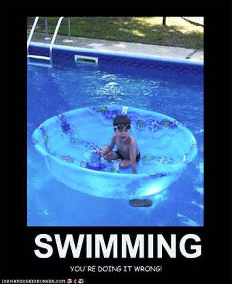 Swimming Memes - 17 images about funny pool pics on pinterest a website
