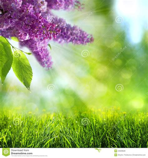 abstract wallpaper spring abstract summer and spring backgrounds stock image image