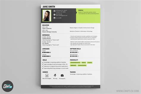 Examples Of A Professional Resume by Voorbeeld Cv Cv Sjabloon Cv Maken Craftcv