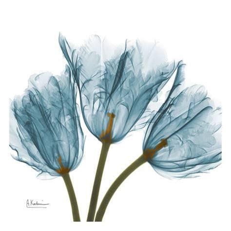 albert koetsier tulips in blue print by albert koetsier at