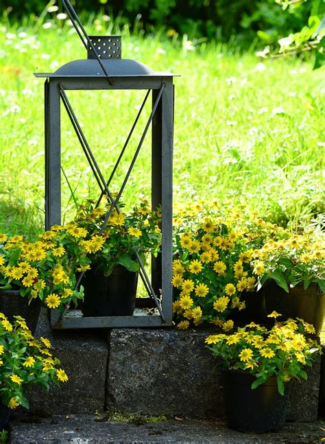 inexpensive garden containers cheerful and cheap garden containers sensible gardening