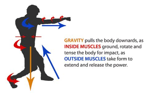 why lifting weights won t increase punching power part 2