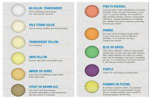 color urine related keywords suggestions for straw colored urine