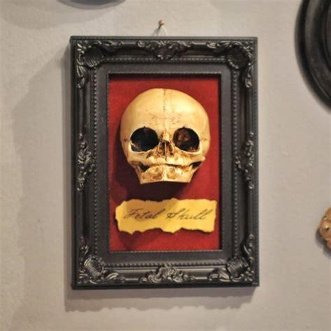 oddities home decor oddity fetal skull display replica oddities wall decor chic