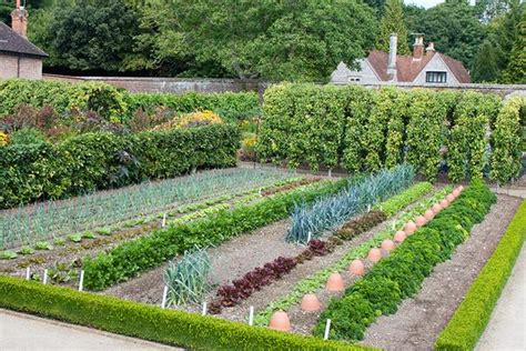 image gallery kitchengarden walled kitchen garden at west dean in sussex