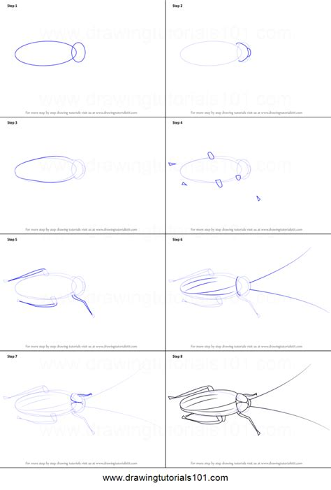 how to draw a cockroach printable step by step drawing
