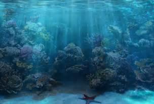Coral Reef Background Fish Tank Paradise reef   exotic salt water fish