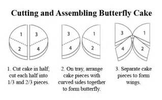 butterfly birthday cake template printable butterfly cake template bugs butterflies
