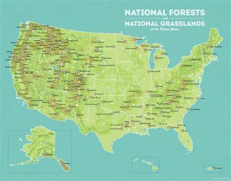 map us national forests us national forests map 11x14 print