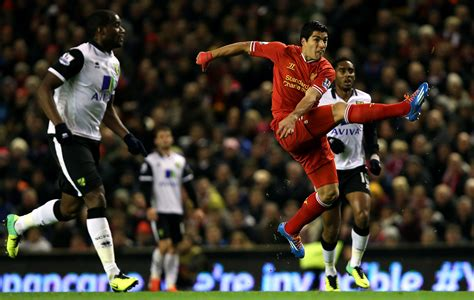 luis suarez is a bully anthony pilkington begs liverpool