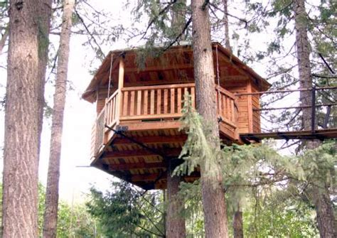 Tree House Plans Design 17 Best 1000 Ideas About Simple