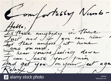 comfortably numb pink floyd lyrics pink floyd comfortably numb track from the wall album