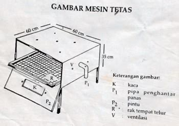 Mesin Penetas Telur Ayam Di Lung cara menetaskan telur dengan lu pakan ternak soc