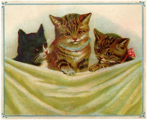 vintage kitties clip art  graphics fairy