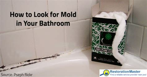 how to stop mold in bathroom how to detect mold in your bathroom