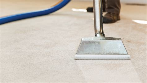carpet steam cleaning grayhart s blog why a professional company can be the best carpet cleaner