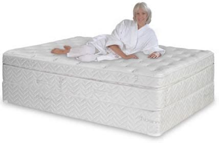 Sleep Comfort Beds by The Sleep Therapy Deluxe Foam Mattress Absolute Comfort On Sale