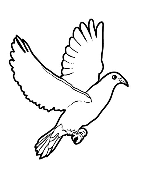 birds to color birds free colouring pages