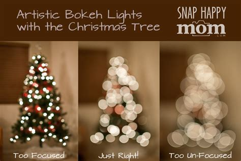 how to take a picture of a christmas tree how to take tree portraits with a blurry background snap happy
