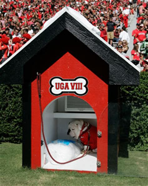 uga dog house georgiadogs com university of university of georgia official athletic site