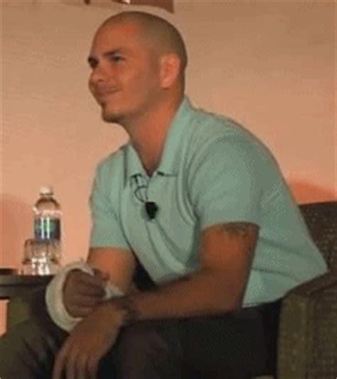 how to your pitbull to be a service pitbull pitbull rapper fan 32891188 fanpop