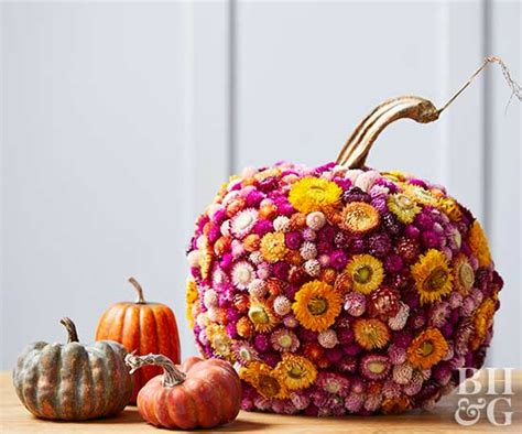 Preserved Flower Black Real Best Choice To Decorate Room fresh ideas for pumpkin decorating