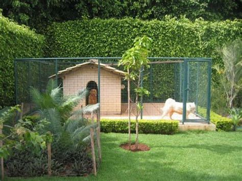 backyard dog pens pics for gt small outdoor dog pen