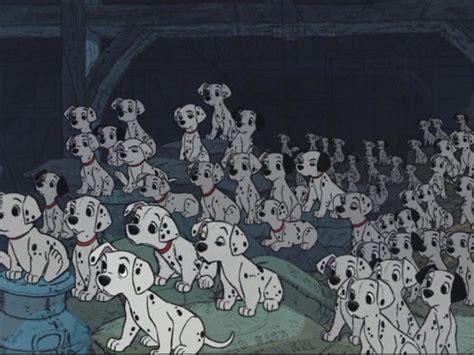 disney puppies dalmatian puppies disney wiki fandom powered by wikia