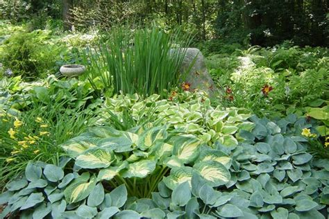 Shade Gardening Tips Quiet Corner Shade Gardening Ideas